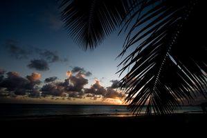 Guide des Caraïbes restaurant