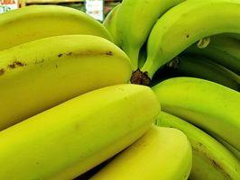 Comment faire mûrir les bananes (rapide!)