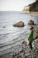 Bonnes plages pour des coquillages à Washington