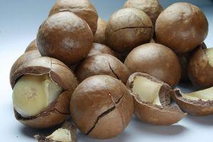 Comment Rapidement De-Shell noix de macadamia