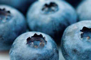 Comment utiliser Lye pour traiter et bleuets secs