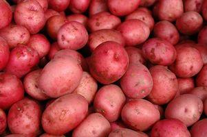 Comment micro-ondes Pommes de terre rouges