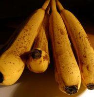 Comment garder Pain aux bananes d'être trop humide