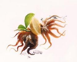 Comment nettoyer une Octopus