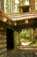 Budget Cabins dans le Tennessee