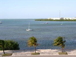 Hôtels de la région de West Palm Beach sur l'eau