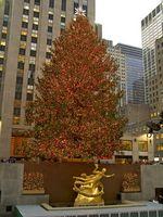 Activités en Décembre à New York