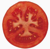 Comment Déshydrater tranches de tomates
