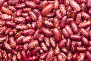 Quelle est la différence entre les haricots rouges et haricots?