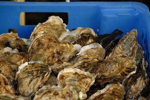 Restaurants de fruits de mer à Alexandrie, en Virginie