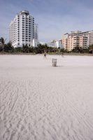 Beachfront hôtels à Hollywood, en Floride