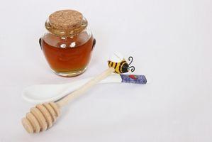 Comment Remplacer miel pour sucre inverti