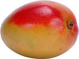 Comment servir un Mango