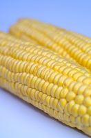 Quelle est la différence entre le jaune et blanc semoule de maïs Quand il s'agit de cuisson?