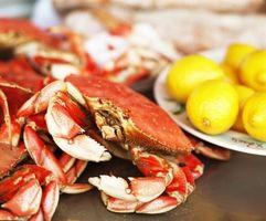 Comment manger un crabe entier