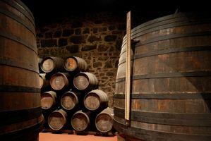 Processus de fermentation dans la vinification