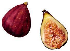 Que faire avec figues fraîches