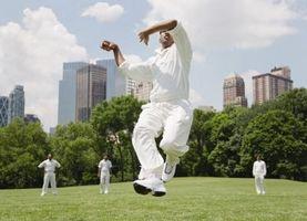 A propos des quilleurs dans Cricket