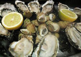 Comment faire cuire les huîtres dans le four